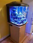 Morské akvárium