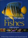 Dr.Burgess's Atlas of Marine Aquarium Fishes