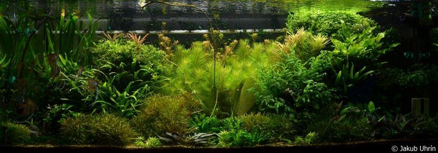 Akvarium 1120L