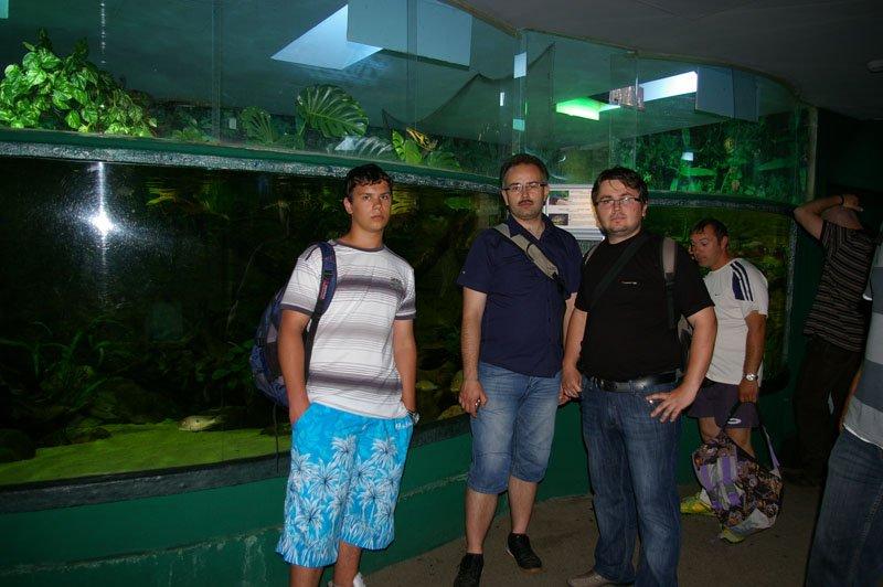 Tropicarium Budapest : Akvaria - akva.sk