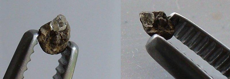 ada amazonia ...diamant..
