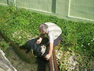 Teplý potok Bojnice