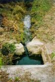 Venezuela, typická lokalita, odvodňovací kanál v Cata, NP Henri Pittieri